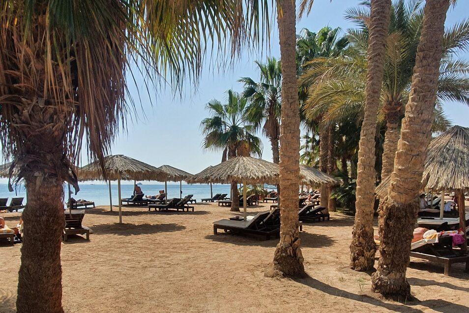 Strahlende Sonne, kristallblaues Wasser und Palmen. Das ist der Strand von Hurghada.