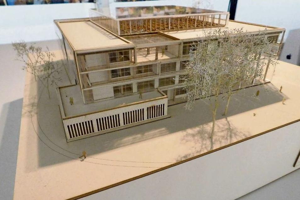 So könnte der Bafa-Neubau laut Idee von Paula Noack aussehen.