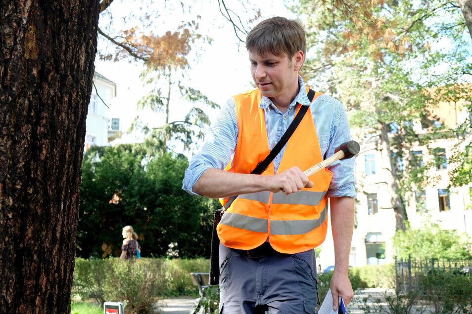 Meistens überprüft Matthias Karich Bäume am Straßenrand. Die Warnweste gehört da zum Arbeitsschutz.