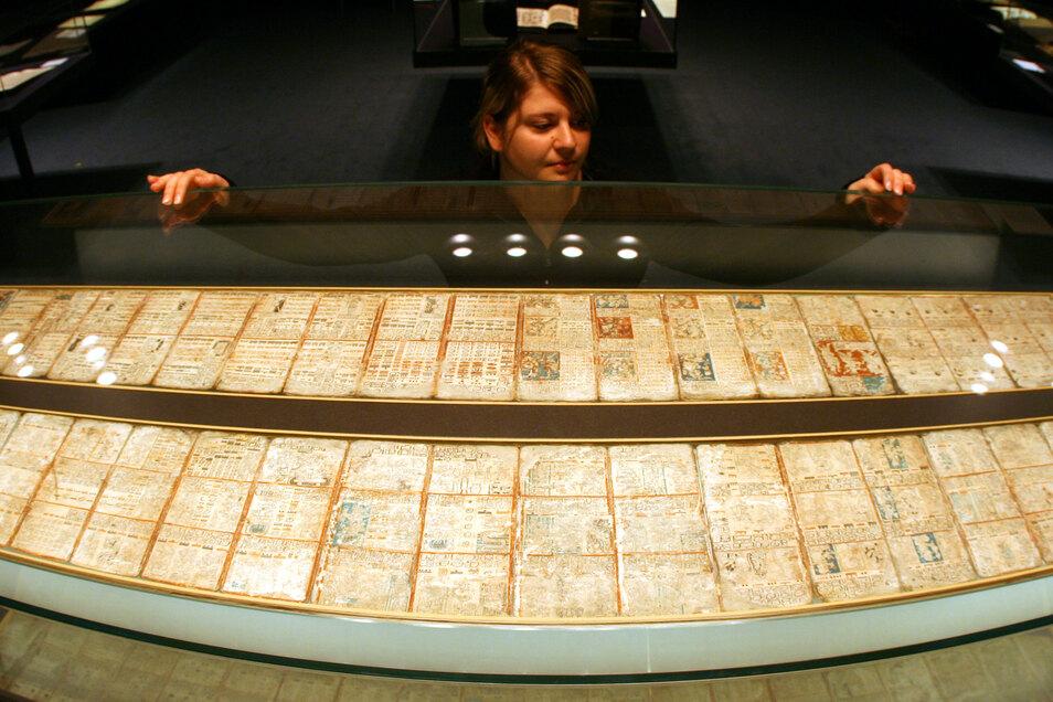 Der Dresdner Maya Codex:  Er besteht aus 39 Blättern aus Rindenbast, die in zwei Streifen mit einer Gesamtlänge von 3,56 Metern zwischen Glasplatten liegen.