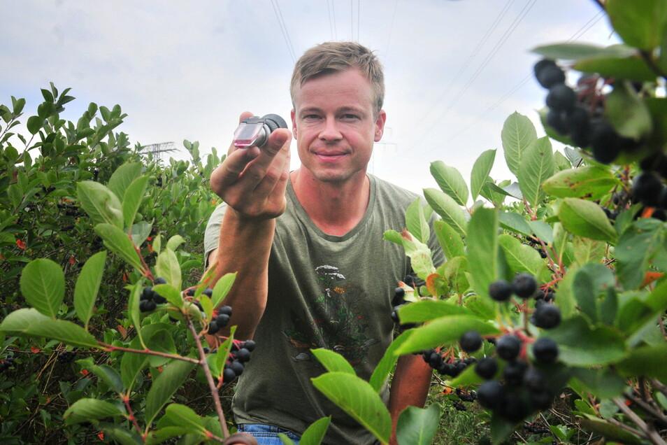Auch 2019 war der Blick durch das Brix-Meter keine Offenbarung für Michael Görnitz vom gleichnamigen Obstbau in Neusörnewitz. Nach der ausgefallenen Ernte 2020 hofft er auf eine bessere in diesem Jahr - der Winter hat dafür gute Voraussetzungen gescha