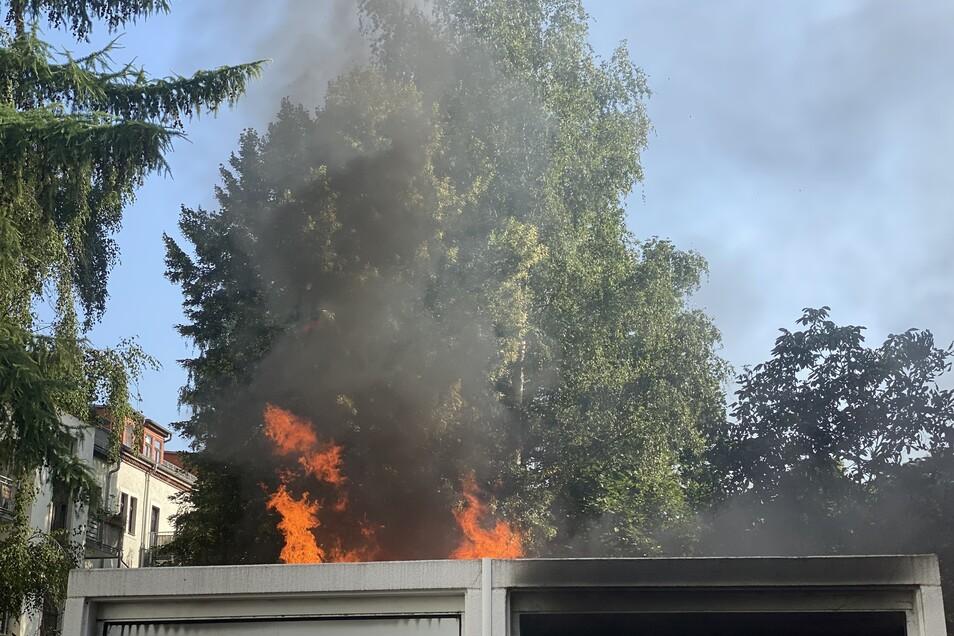 Diesen Brand hat die Feuerwehr in Pieschen gelöscht.