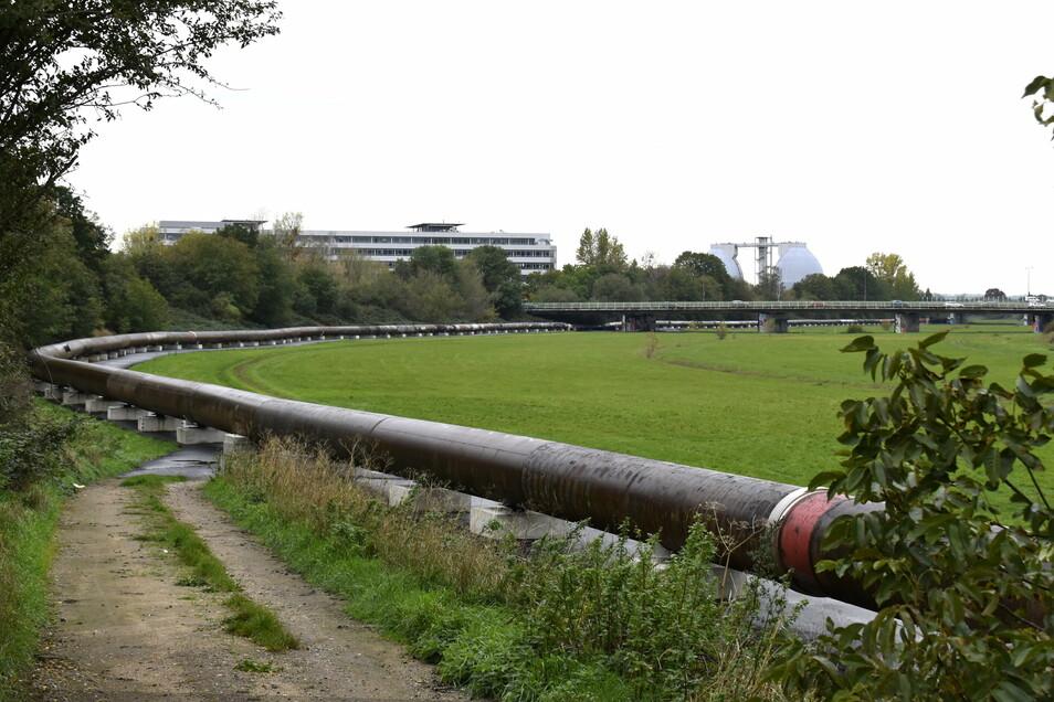 Durch diese großen Rohre fließt das Abwasser auf der Ersatztrasse durch die Kaditzer Flutrinne zum Klärwerk.