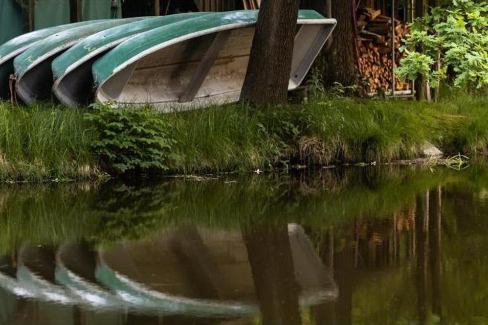 Die Ruderboote vom Teich im Großharthauer Schlosspark sind schon ziemlich alt und sollen jetzt durch neue ersetzt werden.