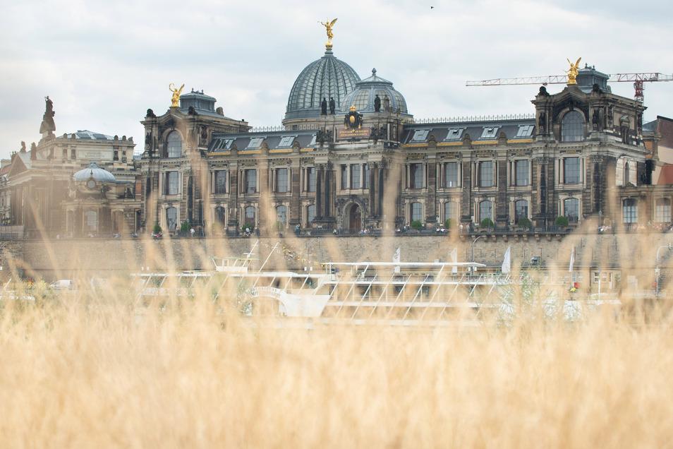 Es fehlt Regen. Das Gras ist schon braun geworden und die Elbe ist zum Rinnsal verkommen. So trocken wird es künftig häufiger, sagen Wissenschaftler.
