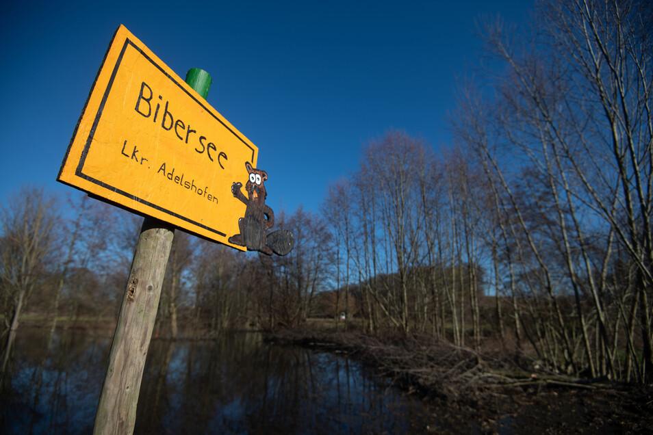 """Ein handgemachtes gelbes Ortsschild verweist auf den """"Bibersee""""."""