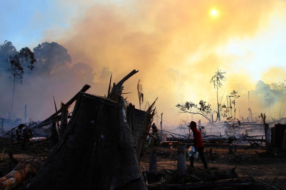 Auch weit entfernte Katastrophen - hier ein Brand in Brasilien - haben oft Verbindungen zueinander.