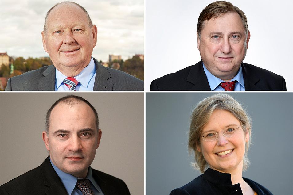 Rechnen sich gute Chancen für das Direktmandat im Bundestag aus: Klaus Brähmig, André Hahn, Steffen Janich, Corinna Franke-Wöller (von links oben nach rechts unten).