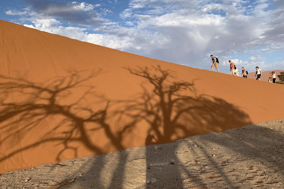 Sanddüne 45: Zu Fuß durchs Weltnaturerbe.