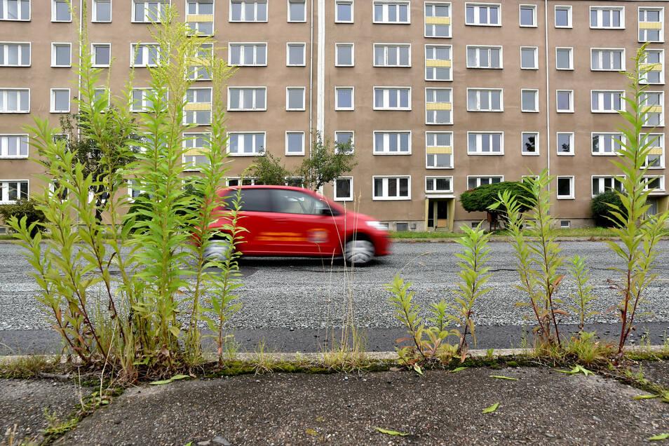 Der Wohnblock Straße der Freundschaft 10 bis 22 in Zittau-Ost wird seit gestern entkernt und danach abgerissen.