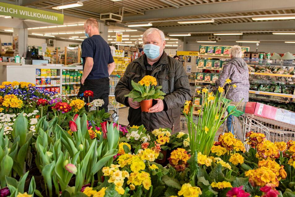 Im Großenhainer Landmaxx Gartenmarkt erfreut sich Kunde Horst Rocher an den zahlreichen Blumen.