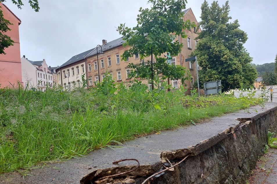 Die Grünfläche an der Härtelstraße 1 in Waldheim soll gestaltet werden.