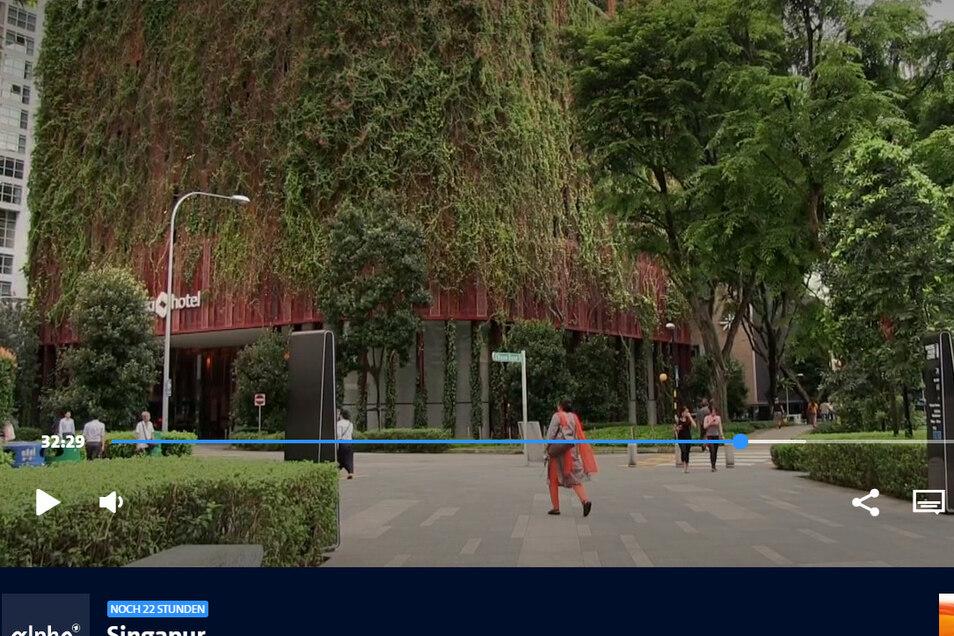 Grüne Architektur wie in Singapur – diese Vision für das Riesaer Muskator-Gelände hat auch Sven Wendisch.