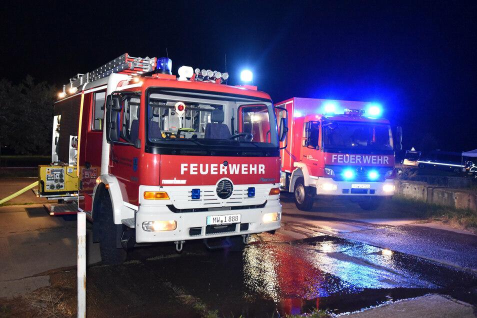 Alle Wehren der Gemeinde Striegistal waren im Einsatz. Vor Ort waren Kameraden aus Etzdorf, Berbersdorf, Böhrigen und Marbach.