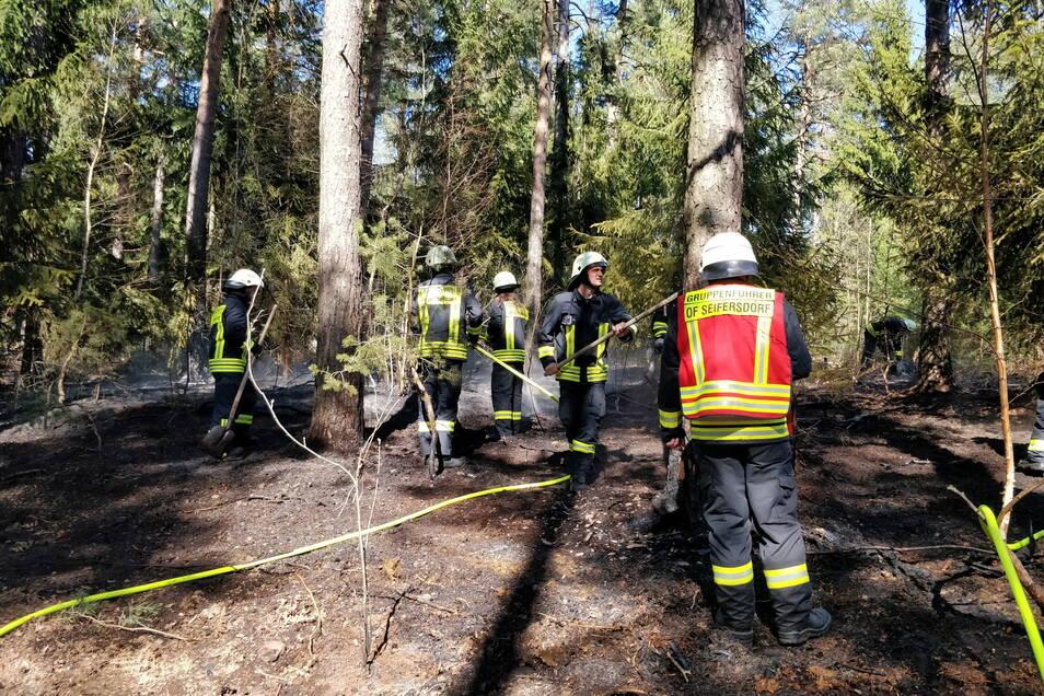 Hier brannte Ostern vor einem Jahr der Wald in der Dippser Heide bei Malter. Damit sind dort besondere Gefahren verbunden.