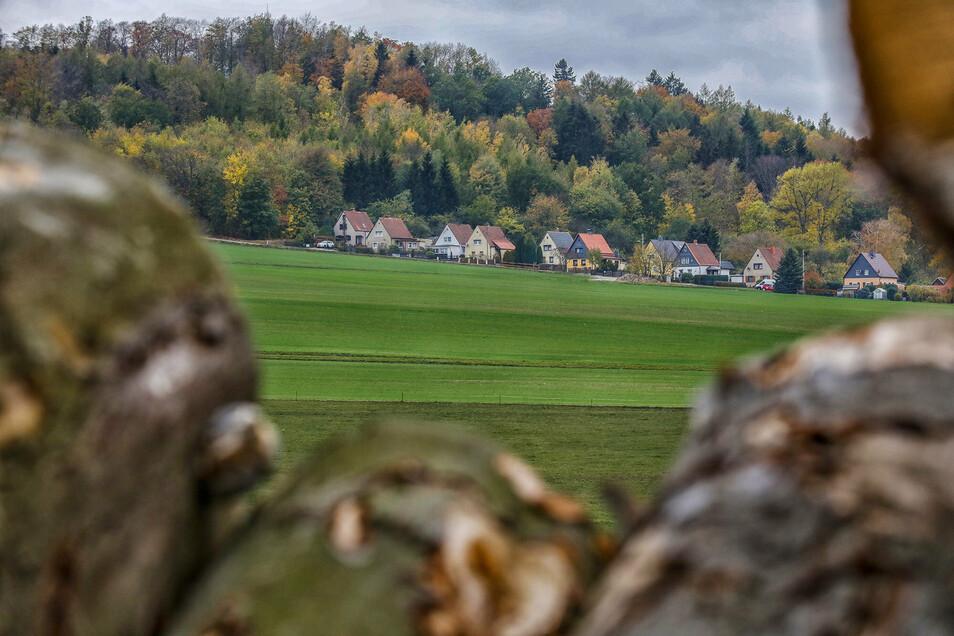 Der Blick zum Schlechteberg in Ebersbach.