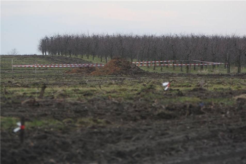 Hinter diesem rot-weißen Absperrband liegt die fünf Zentner Fliegerbombe - in einer Baugrube mitten auf einer Obstplantage.