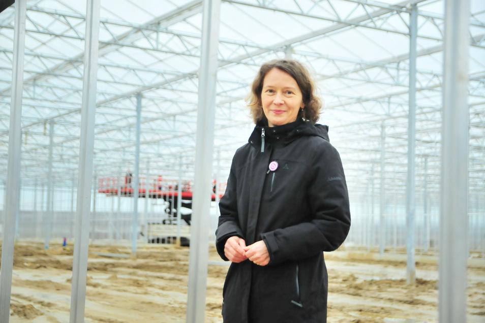 Fast zwei Hektar unter Glas: Produktmanagerin Antonia Feindura im Rohbau des neuen Gewächshauses von Elsner pac Jungpflanzen.