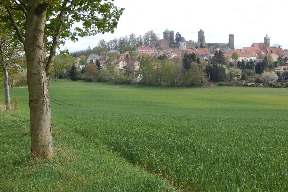 Ein Blick auf die Burg Stolpen.