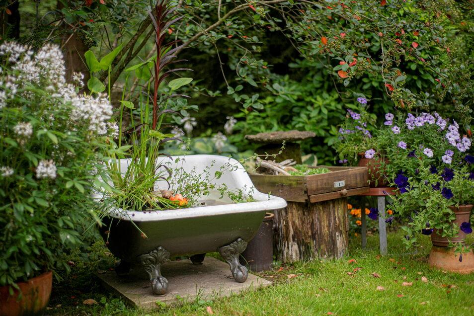Ein alte Sitzbadewanne dient als Teich für Seerosen.