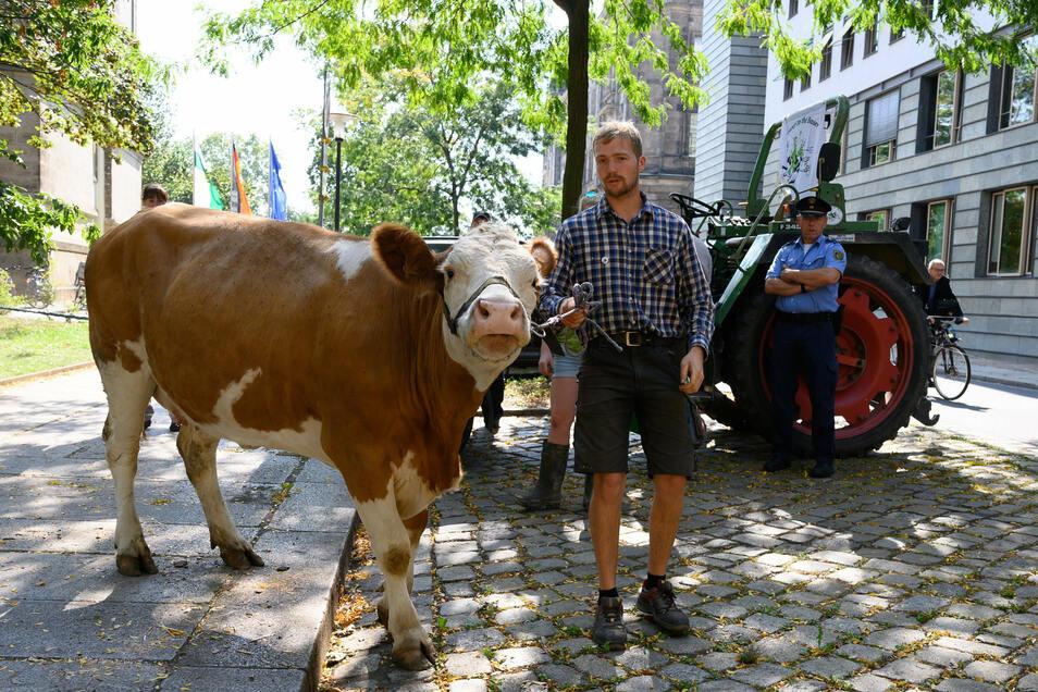 Landwirt Clemens Risse stand während der Protestaktion der Arbeitsgemeinschaft bäuerliche Landwirtschaft mit seiner Kuh vor dem Innenministerium.