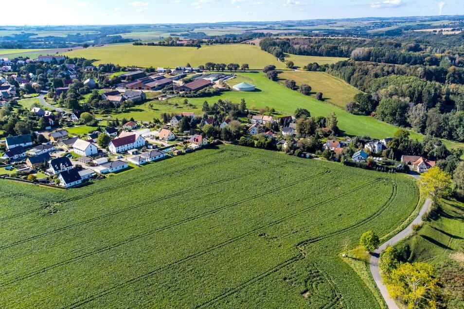 Im Anschluss an das bestehende Wohngebiet in Haßlau (links) will die Stowasser Bau GmbH aus Roßwein einen neuen Eigenheimstandort entwickeln. Voraussetzung dafür ist, dass die Stadträte dem Aufstellen eines Bebauungsplanes zustimmen.