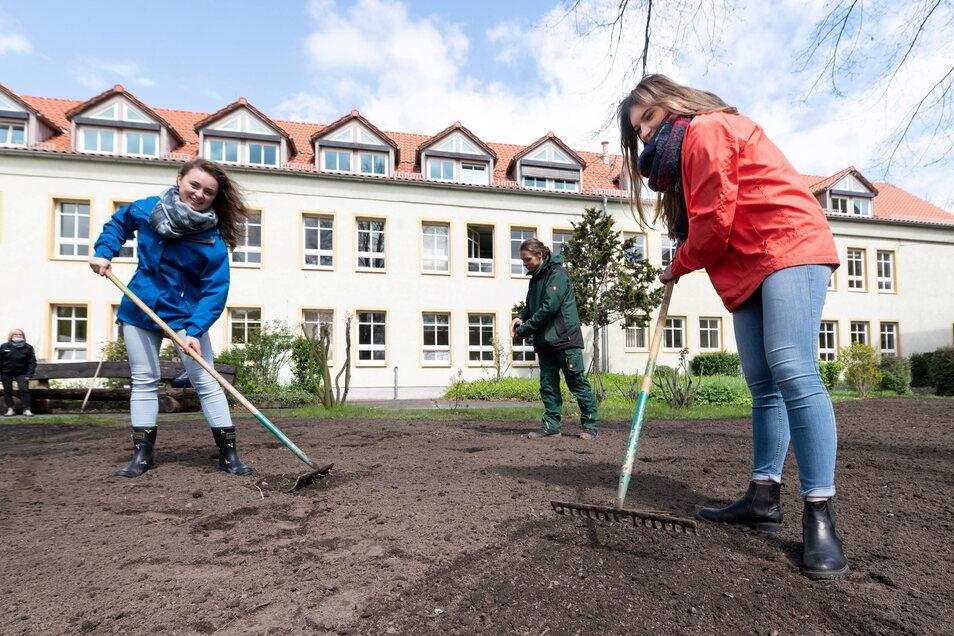 Seit 2020 ist das BSZ Klimaschule. Die beiden Abiturienten Julia Richter und Johanna Sacher gestalten mit Lino Schmidt, der am BSZ Garten- und Landschaftsbau lernt, im Innenhof eine Blühwiese für Insekten. Für fünf Jahre wird das BSZ bei Klimaprojekten fi