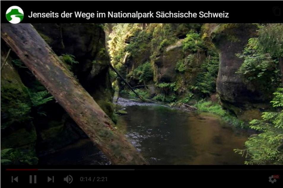 Bilder aus der Kernzone: Diesen Teil des Nationalparks darf niemand betreten.