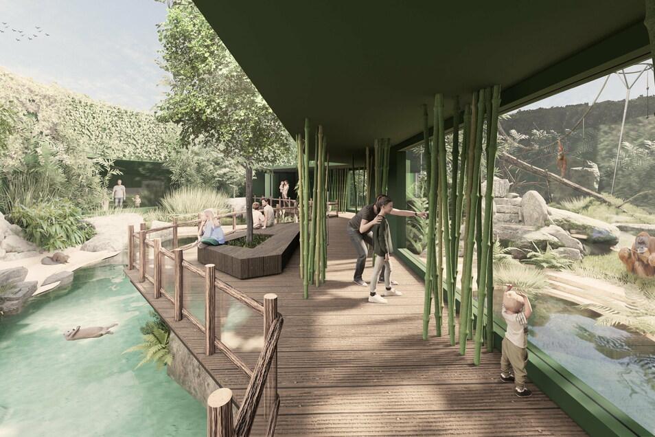 Durch das neue Außengehege werden die Besucher über einen Dschungelpfad geführt. Links sind die Orang-Utans untergebracht, auf der rechten Seite beziehen Glattotter die neue Anlage.