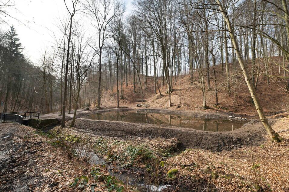 Mitglieder der Arbeitsgruppe Natur im Schönfelder Hochland haben den Teich im Helfenberger Grund entschlammt und seine Ränder neu modelliert.