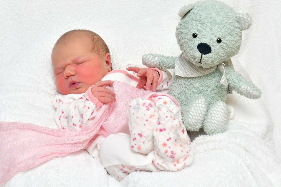 Frida Louise, geboren am 7. Januar, Geburtsort: Freital, Gewicht: 4.000 Gramm, Größe: 52 Zentimeter, Eltern:  Emily und Robert Schiriot, Wohnort: Dresden