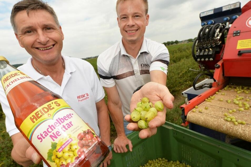 Tino Walcha, Geschäftsinhaber der Siebenlehner Obstkelterei Kurt Heide (li.) und Obstbauchef Michael Görnitz.
