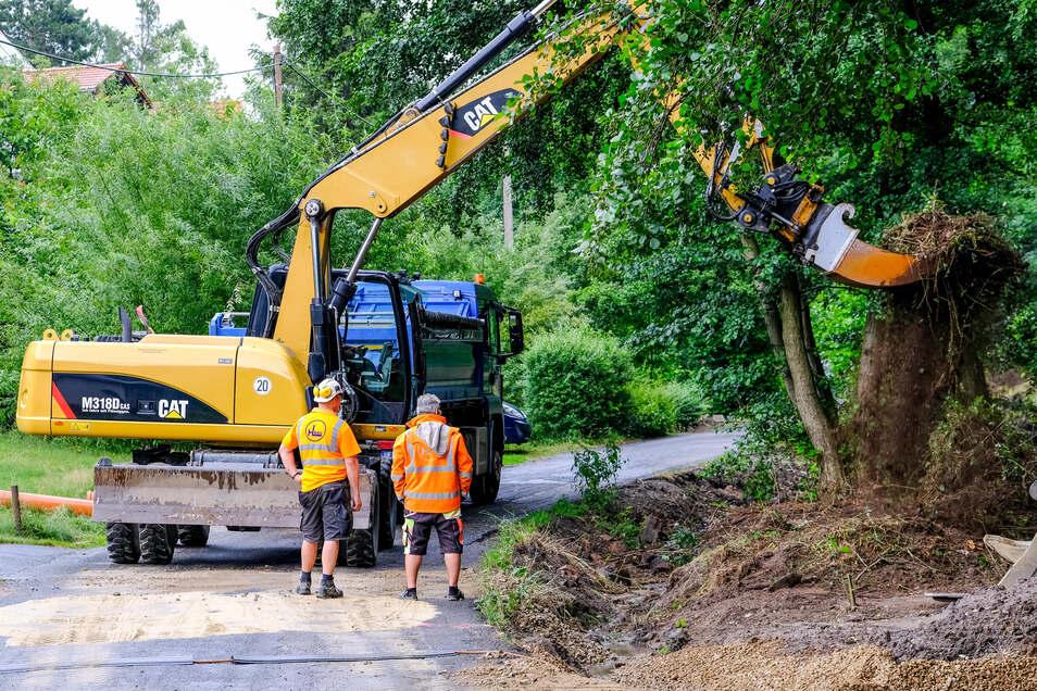 Vorbereitungen für das Verlegen des Rietzschkebachs von den Männern der Firma Heinz Lange aus Ottendorf-Okrilla. Der Wasserlauf soll wieder näher an den Wald heran – weg von der Straße.
