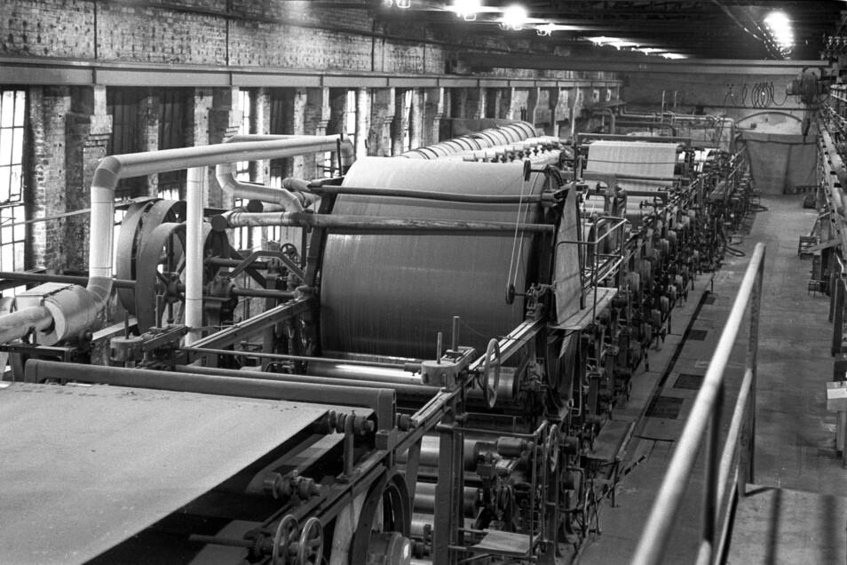 Zweigeteilt: Es gab im Werk eine Seite für die modernere Papiermaschine und eine Kartonseite mit zwei Maschinen. Die Strecke war 50 bis 60 Meter lang.