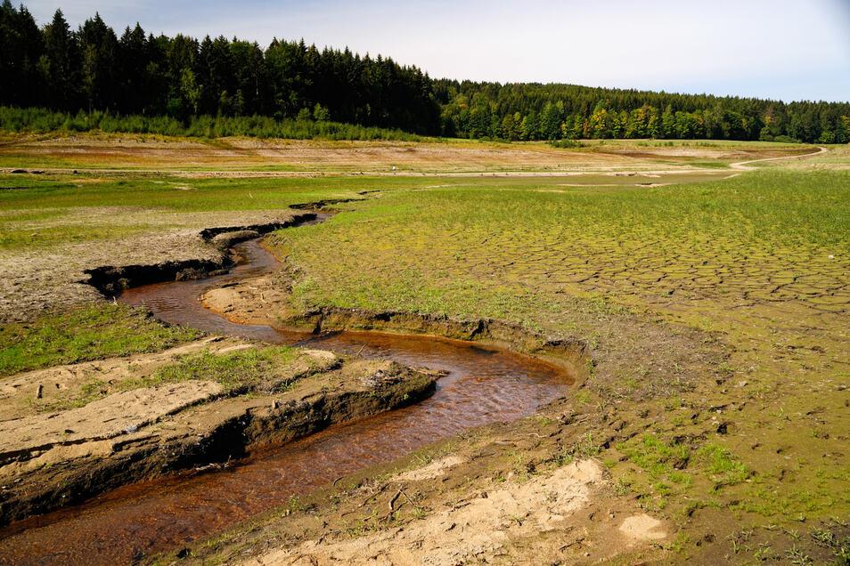 Ähnlich dürr wie nah der Talsperre Lehnmühle im Osterzgebirge sah es letzten Sommer auch an vielen anderen Wasserläufen aus.