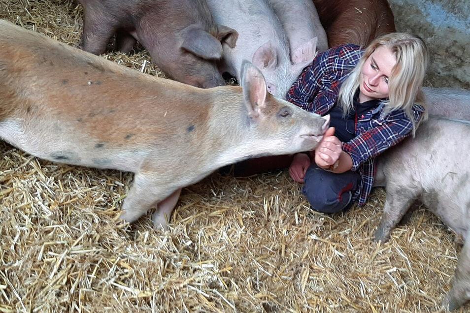 Tierärztin Jenny Knabe promoviert an der Universität Leipzig. Sie hat 2018 im Rahmen ihrer vorbereitenden Promotionsarbeit Duroc-Schweine der Agrarset AG Erlau untersucht, die speziell gefüttert und gehalten werden.