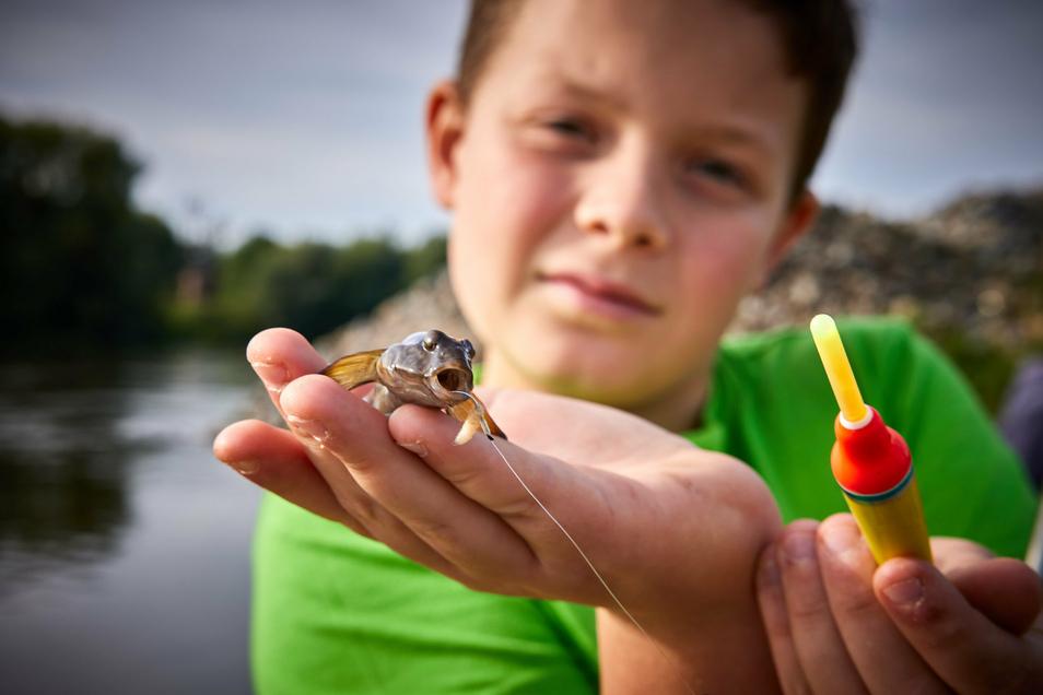 Willi Zeibig (12) und sein Fang. Wieder eine Schwarzmundgrundel. Am Ende des Tages werden die Kinder 86 Stück erbeutet haben.