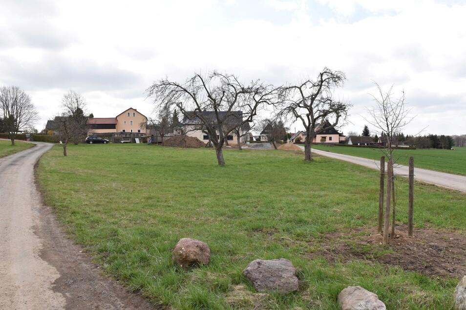 Auf dieser Wiese am Ortsrand von Reinberg will eine Familie neu bauen.