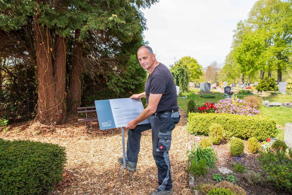 Friedhofsverwalter Silvio Greif steckt auf dem Neuen Friedhof in Neustadt ein Schild in den Boden. Darauf wird die neue Waldinsel beschrieben.