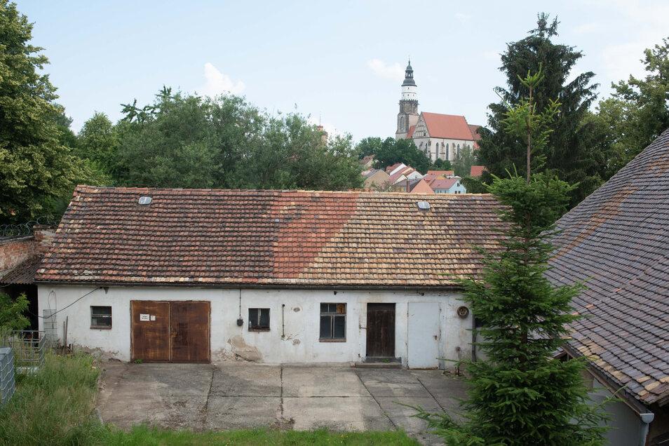 Der neue Standort des Fewa-Clubs befindet sich an der Pulsnitzer Straße am Stadtrand. Der Innenhof kann im Sommer gut genutzt werden.