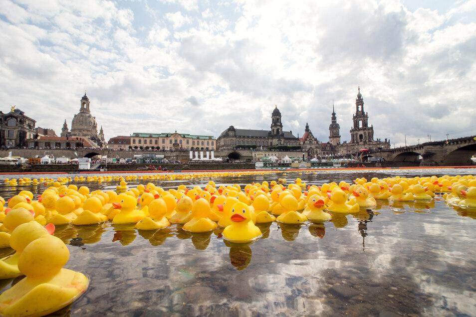 Am Sonntag werden wieder viele kleine Gelbe Plastikentchen auf der Elbe schwimmen.