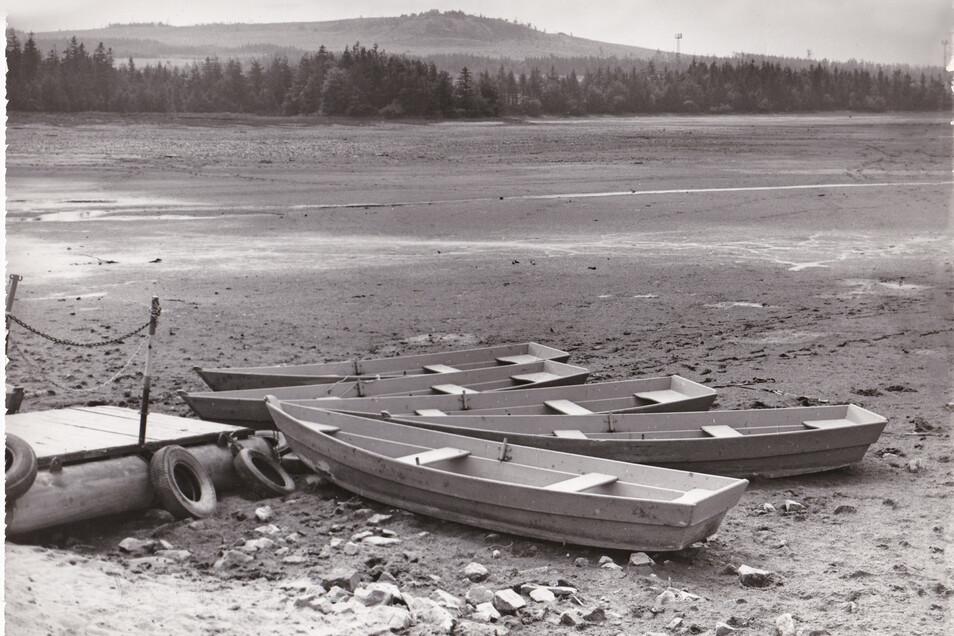 Im Sommer 1990 trocknete der große Galgenteich komplett aus. Die Ruderboote lagen auf dem Grund. Für den Bergbau bedeutete das wochenlangen Stillstand. Wenige Monate später endete der Zinnabbau in Altenberg für immer.