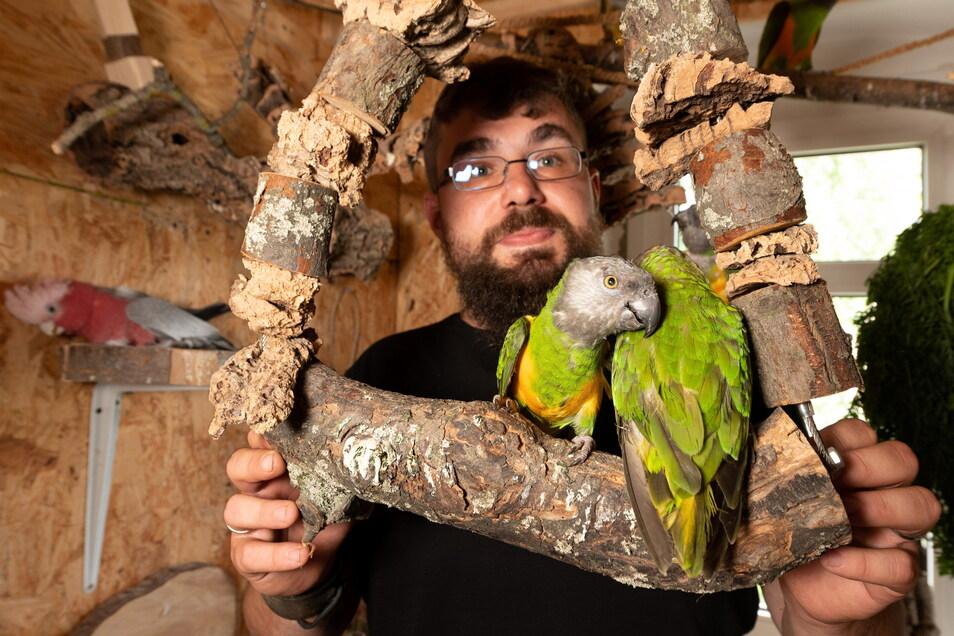 Am liebsten würde Falco Conrad für seine Papageien eine ganze Wohnung mieten.
