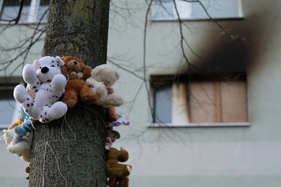 Plüschtiere sind an einem Baum vor dem Mehrfamilienhaus befestigt, in dem eine Mutter und zwei Kinder starben.