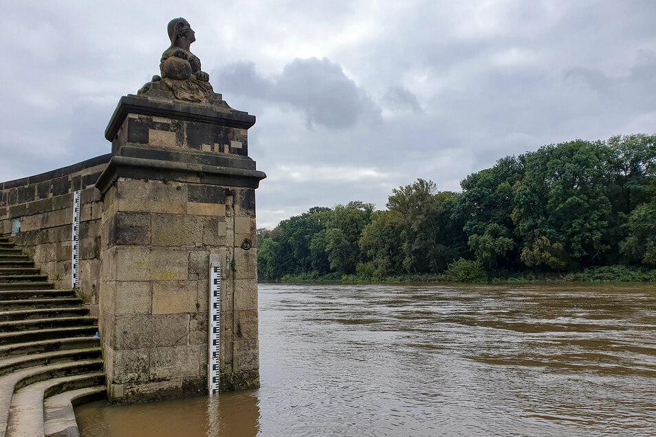 Der starke Regen hat die Elbe anschwellen lassen. Das ist auch am Pegel an der Pillnitzer Schlosstreppe zu sehen. Derzeit steht die Elbe bei 2,44 Metern.