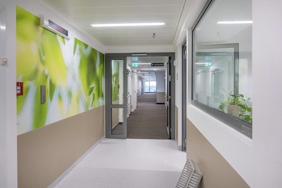 Die neuen Räume der Klinik-Physiotherapie sind mit einem grünen Farbakzent versehen. Auf anderen Stationen dominiert jeweils eine andere Farbe. In der Urologie ist es Pflaume.