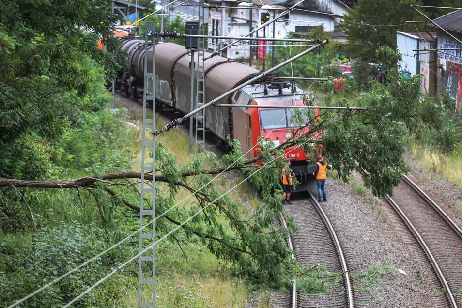 Ein Baum liegt vor einem Güterzug auf den Oberleitungen.