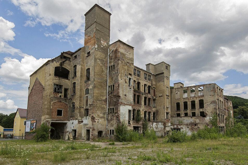 Die Lederfabrik ist längst weg, der Mühlgraben wieder offen.