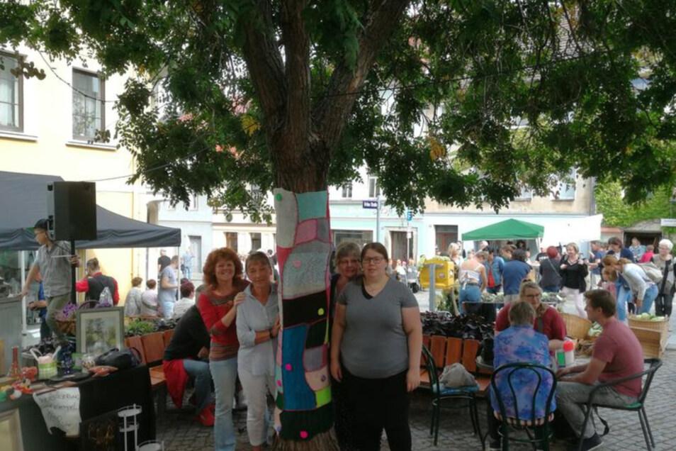 Pilger-Autorin Kerstin Boden (l.) aus Kamenz und ihre treuen Strickliesels Angelika Ruff, Paula Panitz und ihre Mutter Gerlinde Panitz (v.l.) brachten zum Herbstfest einen gestrickten Stammbezug an der Blasenesche am Saumarkt an.
