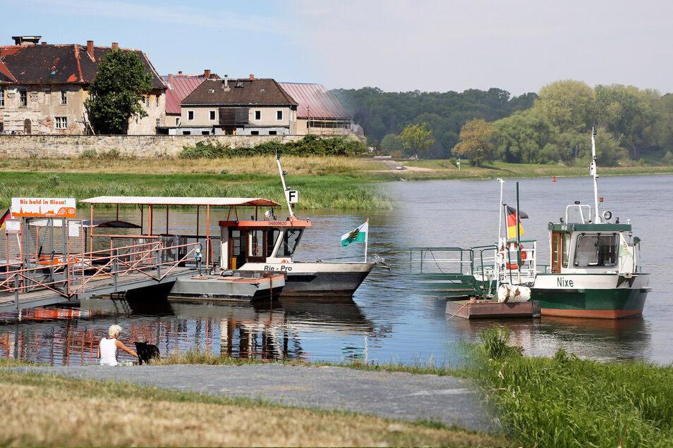 Die Fähren in Riesa und Strehla starten demnächst in die Saison. Die bringt einige Neuerungen mit sich.